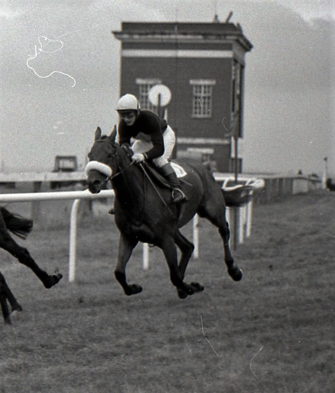 Red Rum honoured with special Carlisle race day