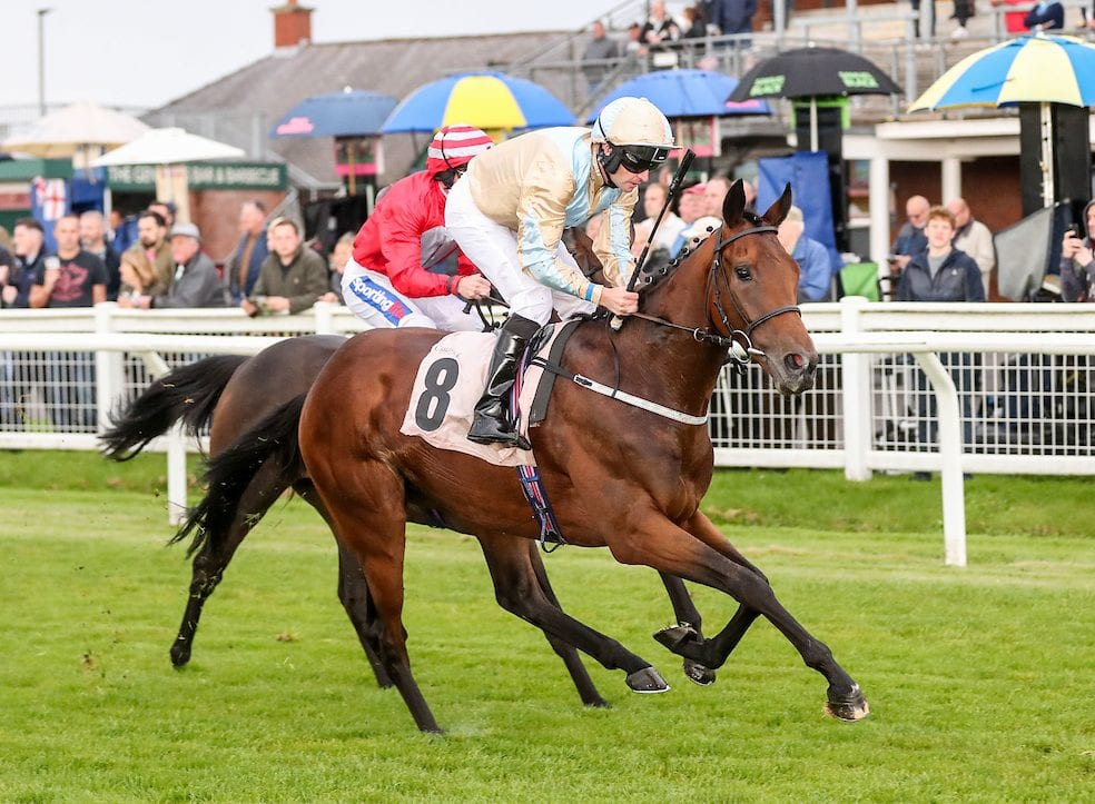Leading trainers go head-to-head in big race finale at Carlisle